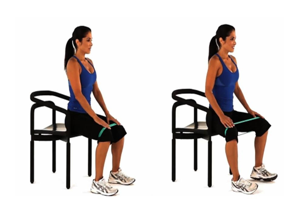 http://www.exercise.com/exercise/band-assisted-seated-hip-abduction